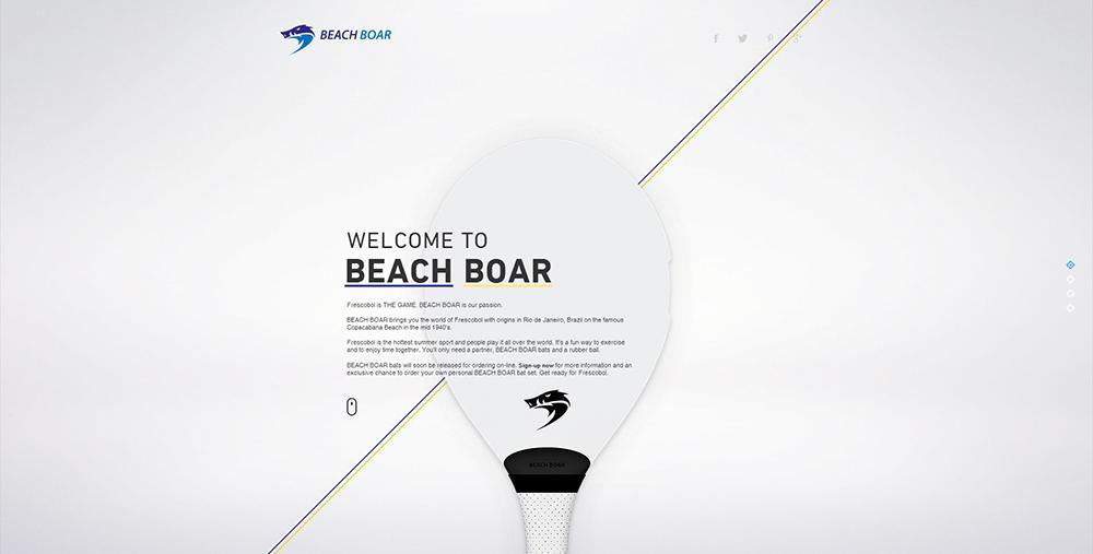 www.beachboar.com